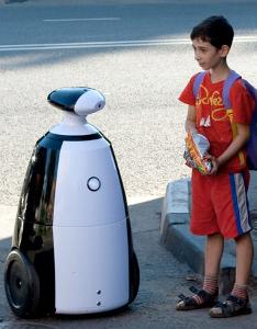 R.Bot-100